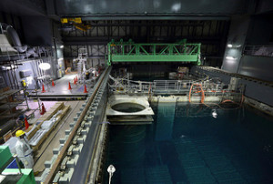 Fukushima Unit 4 Spent Fuel Removal Suspended For 3 Months