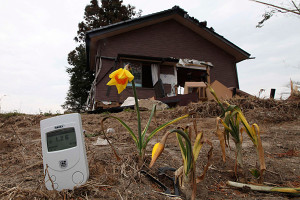 1000 Homes In Fukushima To Be Demolished