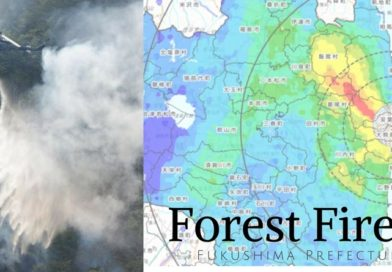 Forest Fires In Fukushima Pose New Risk