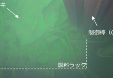 Fukushima Unit 1 Spent Fuel Pool Inspection