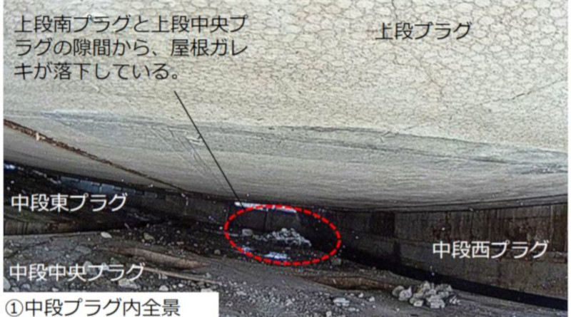 Fukushima Unit 1 Reactor Well Inspection Results