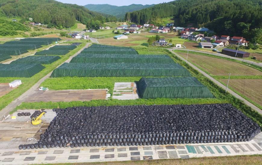 katsurao_2016_contaminated_soil