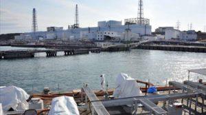 rsz_fukushima_port_2011